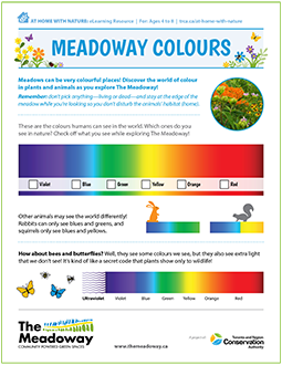 front page of Meadoway Colours At Home with Nature e-learning resource