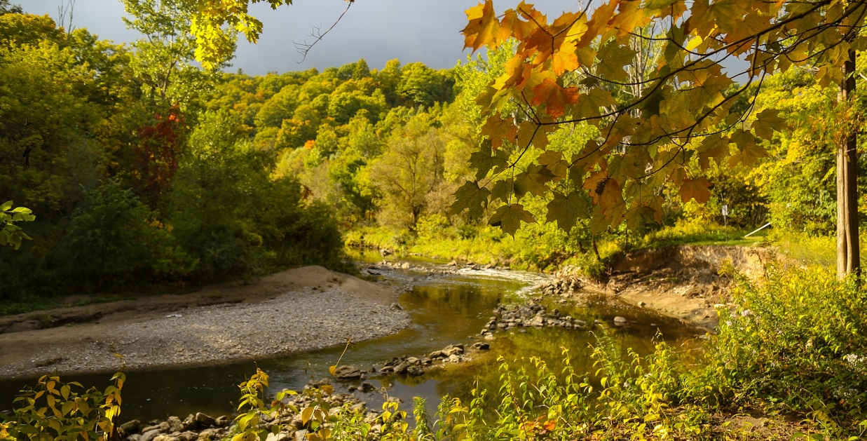 Highland Creek at Morningside Park in Autumn