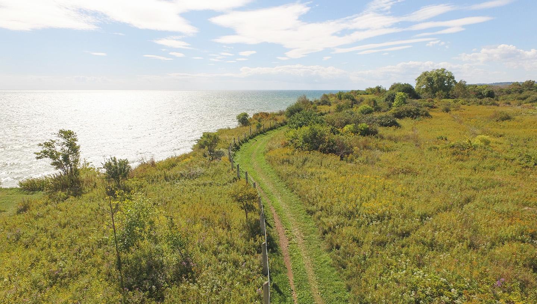 trail on Scarborough Bluffs
