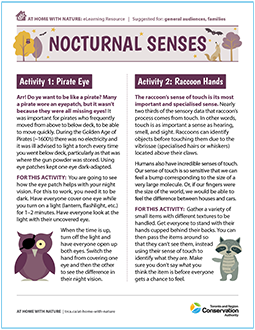 TRCA At Home with Nature Nocturnal Senses e-learning worksheet