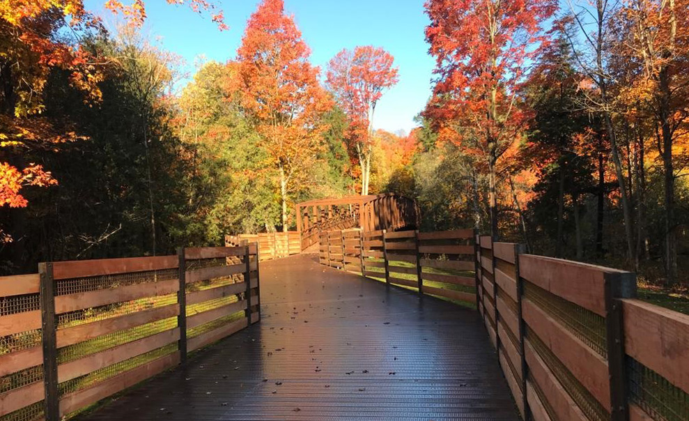 an elevated boardwalk connects two bridges along a portion of the completed East Don Trail phase two