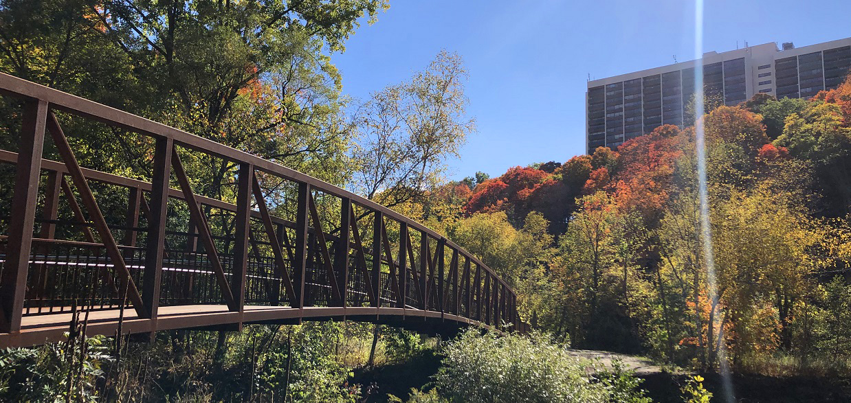 a bridge on the completed East Don Trail phase two spans the East Don River