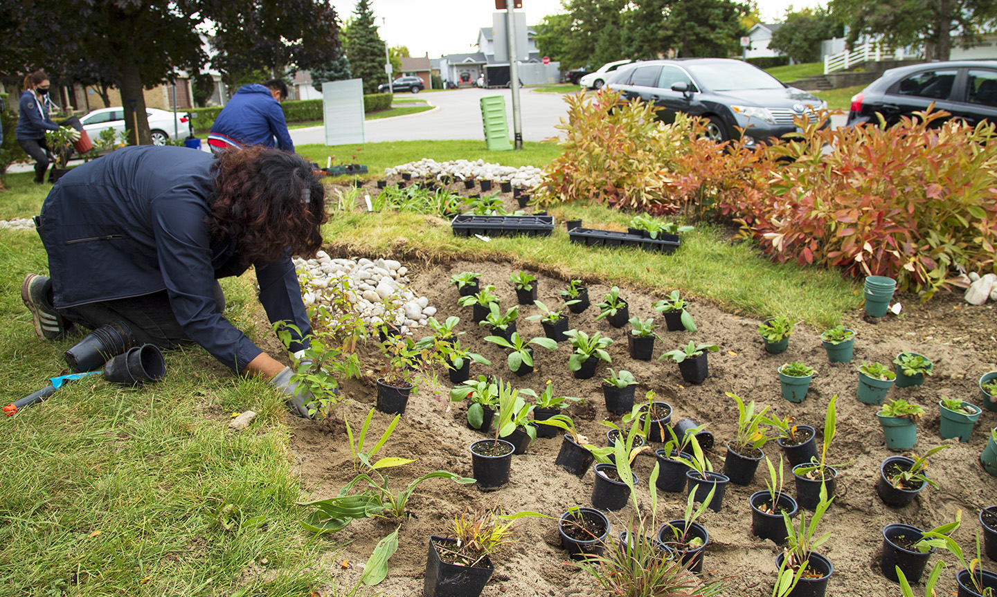 West Bolton SNAP Green Home Makeover homeowners and neighbours plant a rain garden