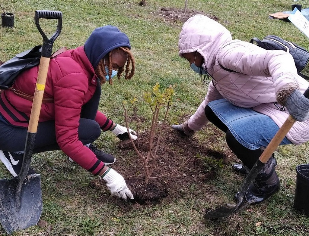 community members take part in TRCA planting event