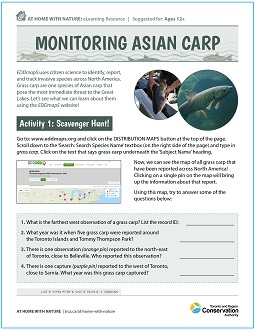 TRCA At Home with Nature Monitoring Asian Carp e-learning worksheet