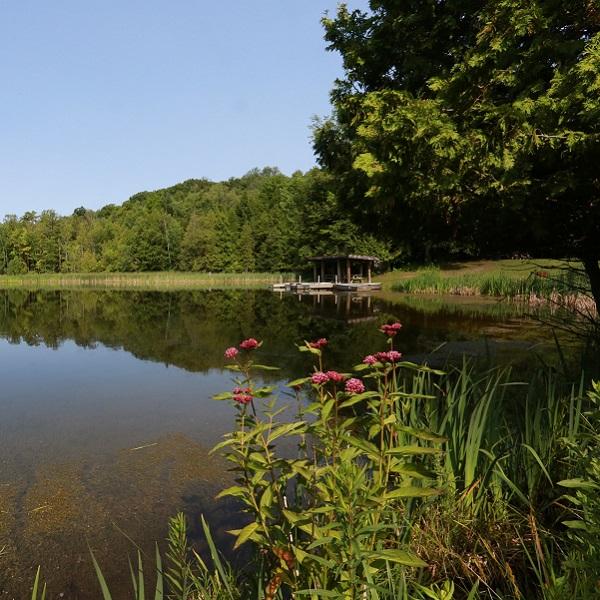 Glen Haffy Conservation Park