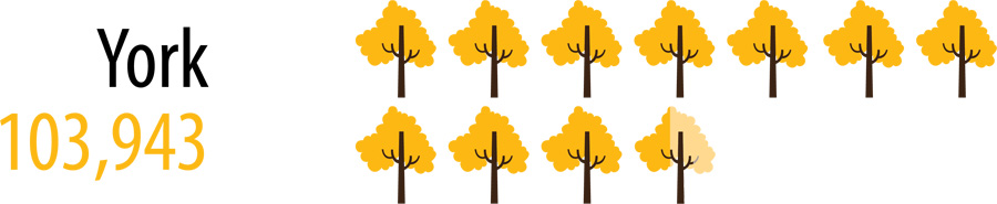 103943 trees and shrubs planted in York Region