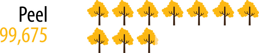 99675 trees and shrubs planted in Region of Peel