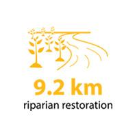 9.2 kilometres of riparian restoration