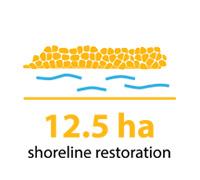 12.5 hectares of shoreline restoration