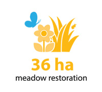 36 hectares of meadow restoration