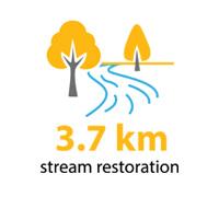 3.7 kilometres of stream restoration