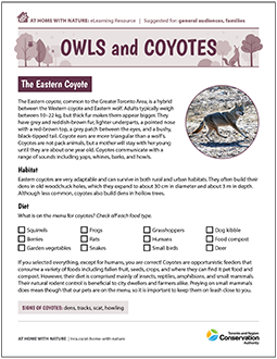 TRCA At Home with Nature e-learning worksheet on owls and coyotes