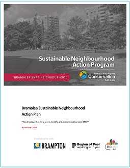 Bramalea SNAP Action Plan