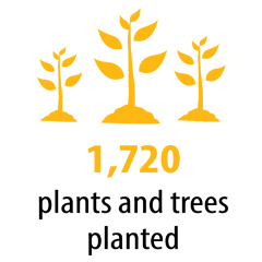 1720 plants and trees planted