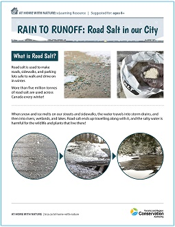 TRCA Rain to Runoff - Road Salt in Our City e-learning worksheet