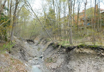 The degraded condition of the ravine and tributary banks behind Clarinda Drive in Reach 2