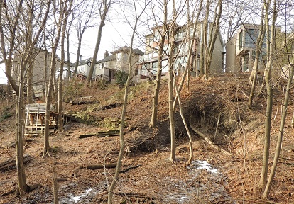 slope failure in Moore Park ravine behind 193 and 195 Hudson Drive