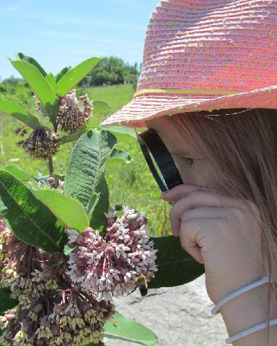 summer camper uses magnifying glass to study insects at Tommy Thompson Park