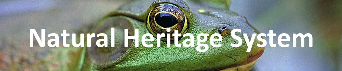 Natural Heritage System