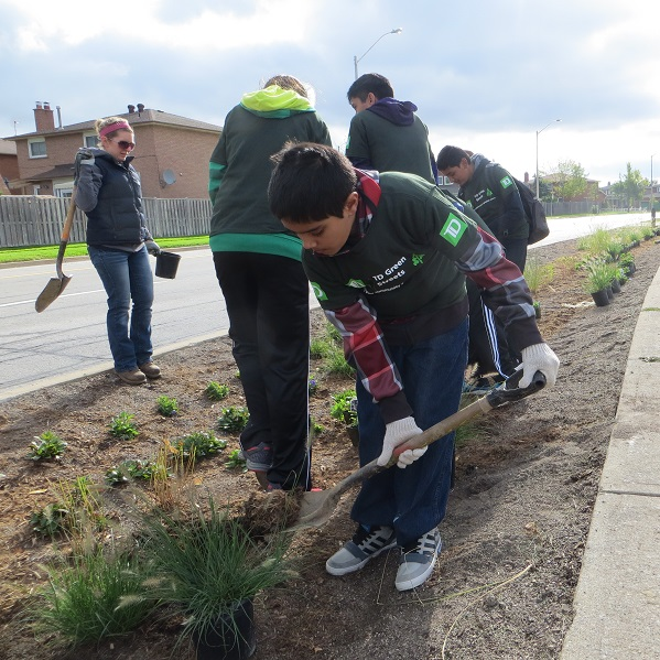 County Court SNAP neighbourhood residents participate in community planting event