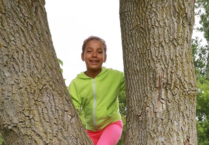 summer nature camper climbs a tree at Claireville Conservation Area