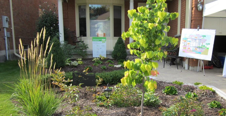 a rain garden forms part of a residential retrofit program in the County Court SNAP neighbourhood