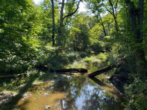 Explore Claireville Conservation Area @ Online