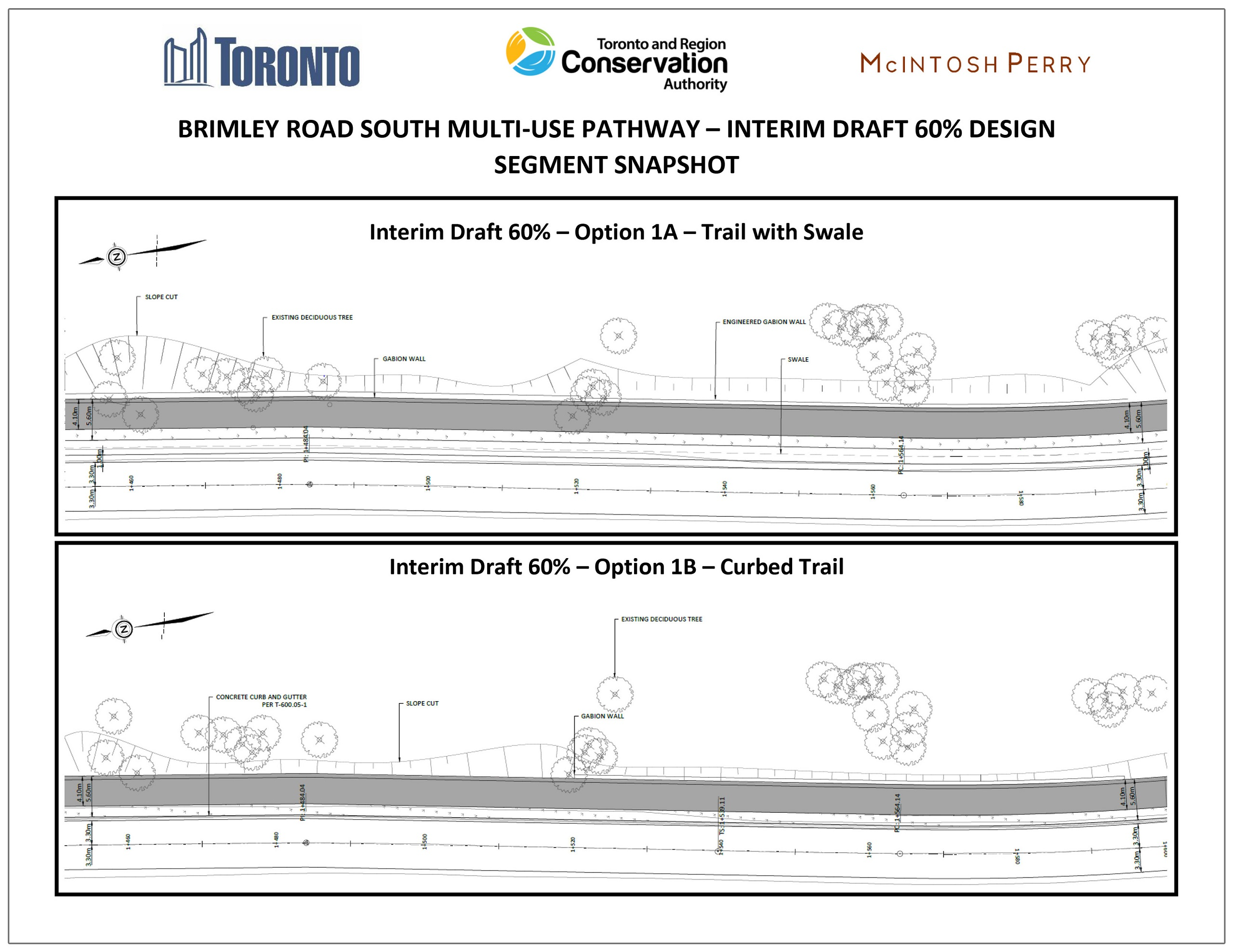 comparison of sub-options for the Brimley Road South Multi-Use Trail