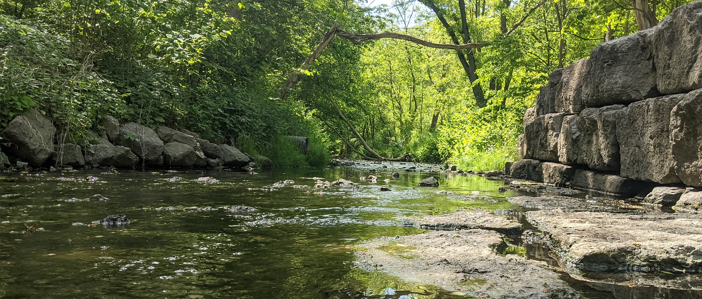low water in stream