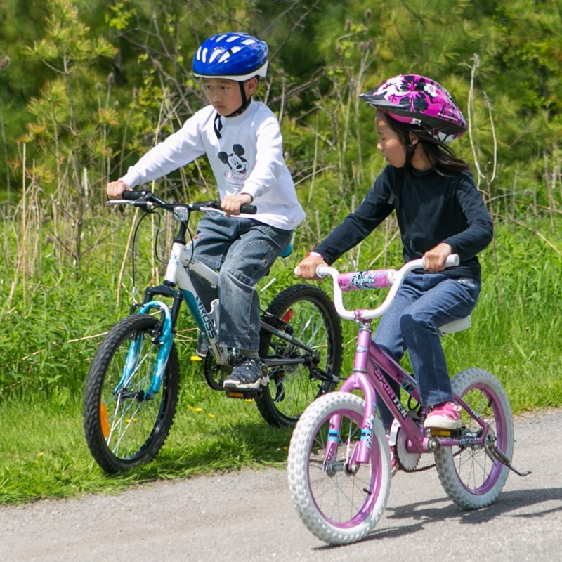 children ride to school on bicycles