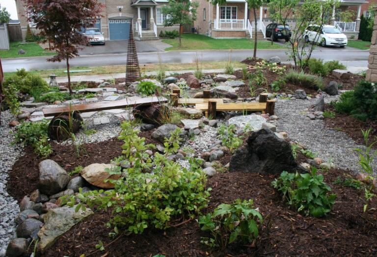 A rain garden on a residential street