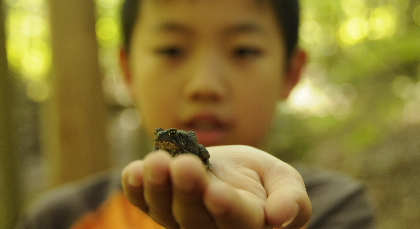 elementary school student enjoys PA day outdoor camp experience at Claremont Nature Centre