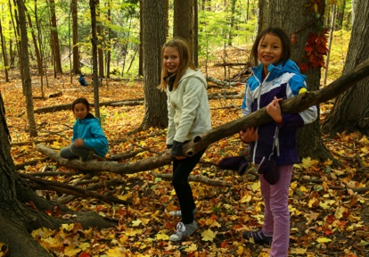 students explore forest during PA day camp at Kortright Centre for Conservation