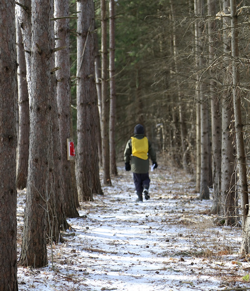 student explores forest trail during winter mini camp at Claremont Nature Centre