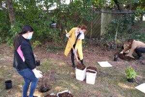 Thornhill SNAP Planting Event at Oakbank Park @ Oakbank Pond Park