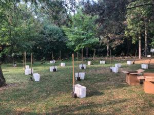 Ukraine Flight 752 Memorial Native Tree and Shrub Planting