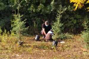 Fall Native Tree and Shrub Planting at Gore Meadows @ Gore Meadows Community Centre