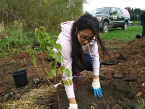 Toronto Conservation Youth Corps - Fall Planting at Sherway Trail @ Sherway Trail