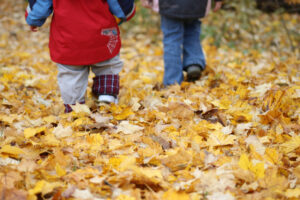 Fall Colours Parent and Tot Walk @ Bolton Camp