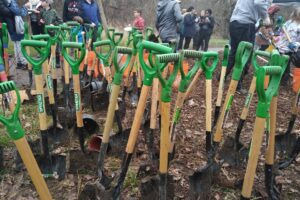 West Bolton SNAP Fall Native Tree and Shrub Planting at Foundry Park