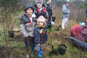 County Court SNAP Fall Native Tree and Shrub Planting